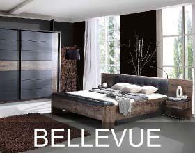 Bellevue system