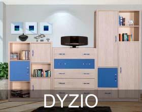 Dyzio system