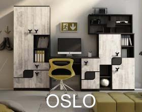 Oslo DIG-NET system