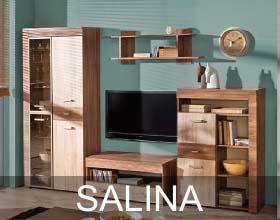 Salina system